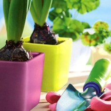 Кашпо для орхидеи (керамика) (7)