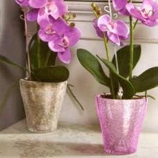 Кашпо для орхидеи (стекло) (30)