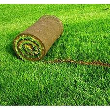 Рулонный газон (1)