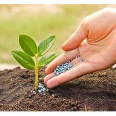 Удобрения для сада (204)
