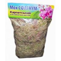 Мох-сфагнум Карпатский