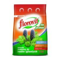 Удобрение Флоровит Хвоя осень 1кг