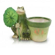 Горшок-жаба